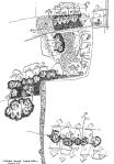 08. habitat rumah kotak sabun