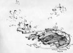 16genangan-air-dan-katak2