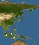map_of_Orlitia_borneensis